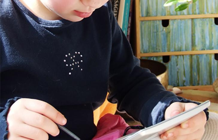 Erfahrene Schulen helfen E-Learning-Einsteigern