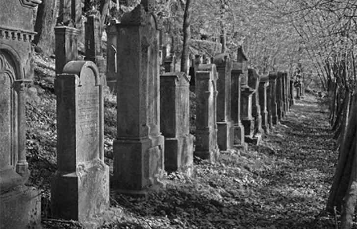 Zuhause sterben und Facebook mitbegraben