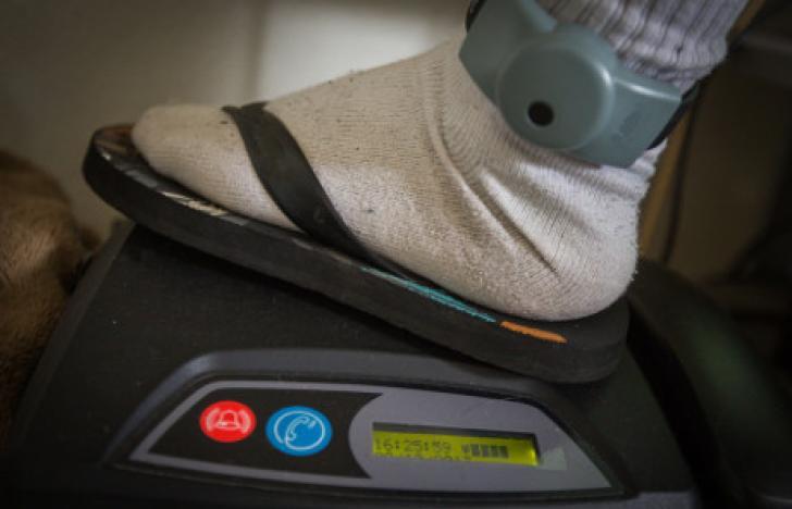 Bewährungshilfe: Arbeiten mit Fußfessel ausweiten