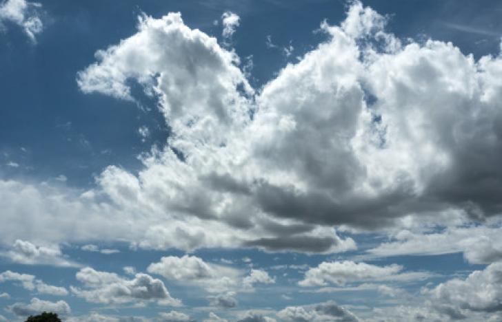 A1 entdeckt nun auch Cloud und IoT