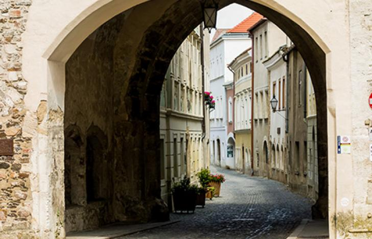 Vollwertiges Cochrane-Zentrum an der Donau-Universität Krems