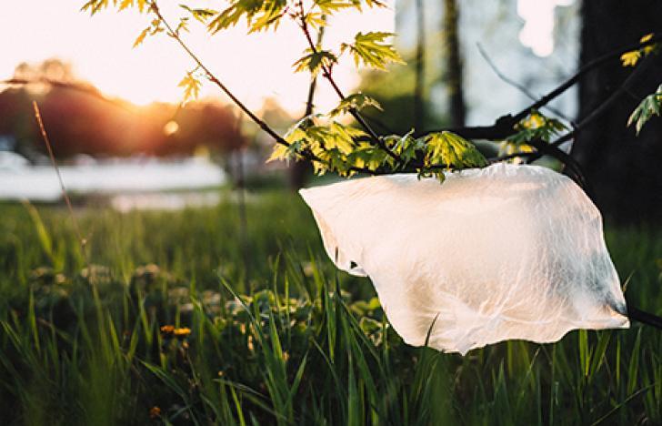 Grüne Kunststoffproduktion