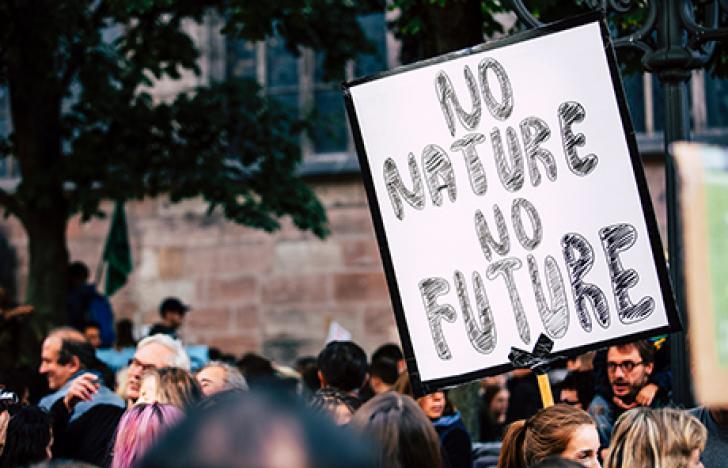 Demokratie und Demonstrationen